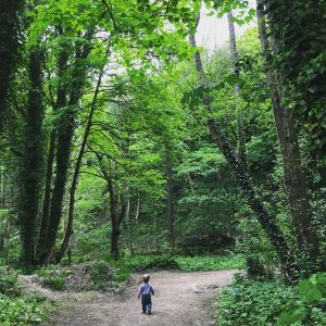 Toddler in forest looking into the wilderness